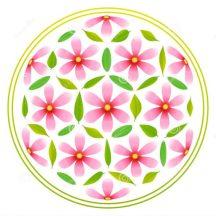 cropped-cropped-flor-de-las-flores-de-la-vida-40406125.jpg